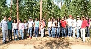 Visita a fazenda de eucalipto
